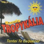 Tentei Te Querer, Vol. 3 de Banda Tropykália