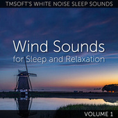 Wind Sounds for Sleep and Relaxation Volume 1 de Tmsoft's White Noise Sleep Sounds