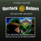 Die alten Fälle (Reloaded), Fall 1: Das Haus bei den Blutbuchen von Sherlock Holmes