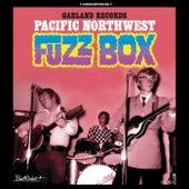 Garland Records: Pacific Northwest Fuzz Box de Various Artists
