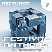 Festival Anthems, Vol. 7 by Various