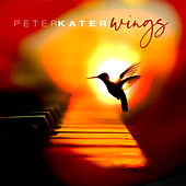 Wings de Peter Kater