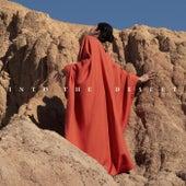 Into the Desert de Ely Guerra