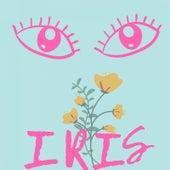 One in a Million de Iris