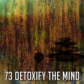 73 Detoxify the Mind by Classical Study Music (1)