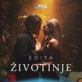 Zivotinje by Edita