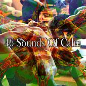 46 Sounds of Calm von Lullabies for Deep Meditation