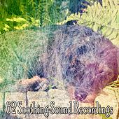 62 Soothing Sound Recordings by Ocean Sounds Collection (1)