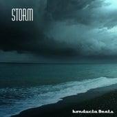 Storm de Konducta Beats