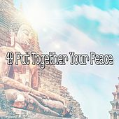 49 Put Together Your Peace de Nature Sounds Artists