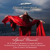 Music for Special Moments W. A. Mozart, J. Rodrigo, F. Chopin, M. Bruch, R. Schumann, L. v. Beethoven, J.S. Bach, J. Pachelbel, J. Suk, F. Liszt, F. M. Bartholdy (Classical Masterpieces) de Various Artists