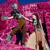 Swing (Mahmut Orhan Remix) de Sofi Tukker
