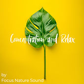 Concentration and Relax von Focus Nature Sound