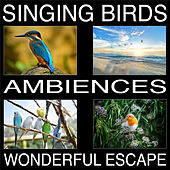 Singing Birds Ambiences, Wonderful Escape von Pat Barnes