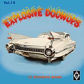 Explosive Doowops, Vol. 14 de Various Artists