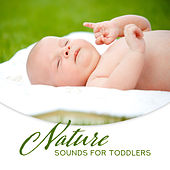 Nature Sounds for Toddlers: Relaxing Music for Deeper Sleep by Nature Sounds (1)
