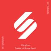 The Way It Is (Prospa Remix) by Prospa