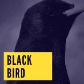 Blackbird by Peggy Lee