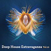 Deep House Extravaganza, Vol.13 by Various Artists