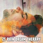 25 Rain Dream Therapy de Thunderstorm Sleep