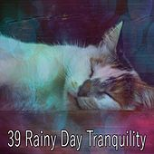 39 Rainy Day Tranquility by Relaxing Rain Sounds