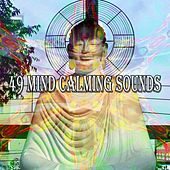 49 Mind Calming Sounds de Zen Meditation and Natural White Noise and New Age Deep Massage