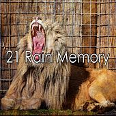 21 Rain Memory by Rain Sounds and White Noise