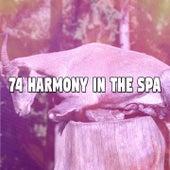 74 Harmony in the Spa by Baby Sleep Sleep