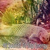 46 Sounds to Sap Energy by Einstein Baby Lullaby Academy