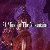 71 Mind in the Mountains de Massage Tribe