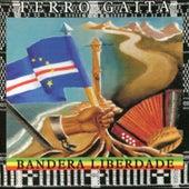Bandera Liberdade de Ferro Gaita