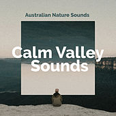 Calm Valley Sounds by Various Artists
