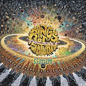 The Husk by Rings of Saturn