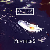 Feathers by Various