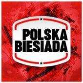 Polska biesiada by Various Artists