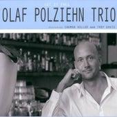 Let It Fall (Feat: Ingmar Heller and Troy Davis) by Olaf Polziehn Trio