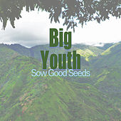 Sow Good Seeds by Big Youth