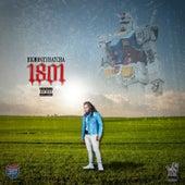 1801 van BigMoneyHatcha