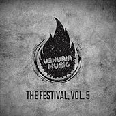 The Festival, Vol. 5 by Various