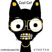 Cool Cat by Xnobodyxspecialx