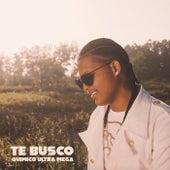 Te Busco by Quimico Ultra Mega