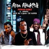 Ana Akukpoli de Pukka Gunz