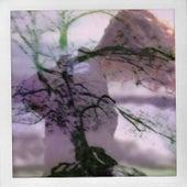 Overthinking Rain (Remix) von Pierce Fulton