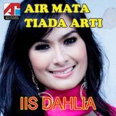 Air Mata Tiada Arti by Iis Dahlia