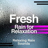 Fresh Rain for Relaxation by Various Artists