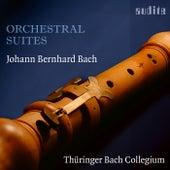 Johann Bernhard Bach: Orchestral Suites von Various Artists