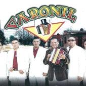 Cumbia para el Barrio de Varonil (1)