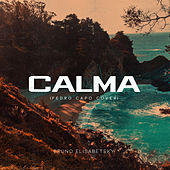 Calma (Pedro Capo cover) de Bruno Elisabetsky