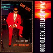 Good Ole Boy Just Lost My Way by Carl Sims