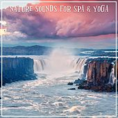 Nature Sounds for Spa & Yoga by Various Artists
